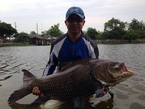Carp Fishing in Thailand at Palm Tree
