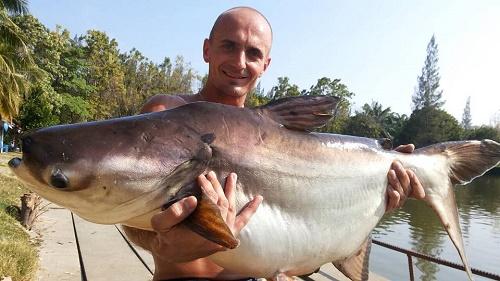 Cha Am Fishing Park fishing Mekong Catfish