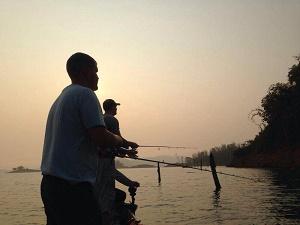 Giant Snakehead fishing Khao Laem Dam