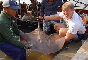 Maeklong River Stingray fishing Thailand