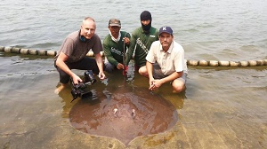 Nat Geo Zeb Hogan stingray fishing Thailand