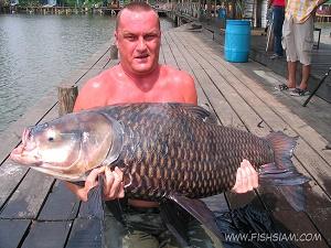 39 Kg Giant Siamese Carp caught fishing in Thailand