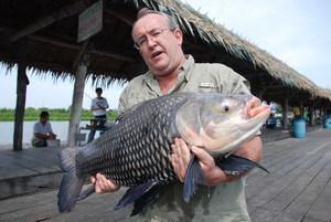 Big Carp and Mekong Catfish caught fishing in Bangkok