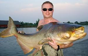 Fishing Mekong Catfish Bangkok