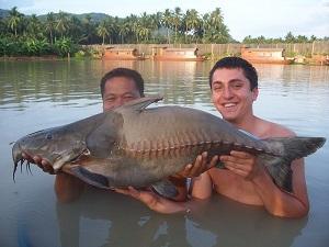Fishing Topcats World Record Ripsaw Catfish