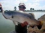 Lure fishing Barramundi in Bangkok