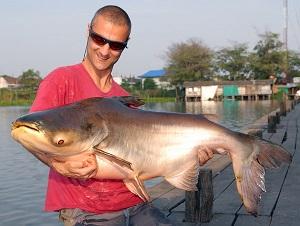 Mekong Catfish fishing Bungsamran in Bangkok