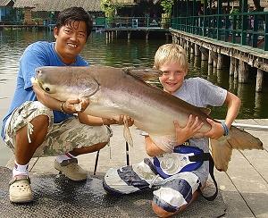 Mekong Catfish fishing in Thailand