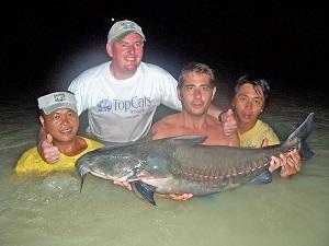 Pending IGFA World Record Niger Catfish in Thailand