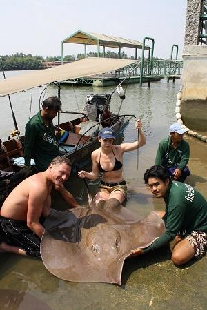 Stingray Fishing Maeklong River