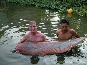 Thailand Arapaima fishing Bungsamran Lake Bangkok