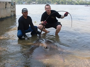 Thailand freshwater stingray fishing Maeklong