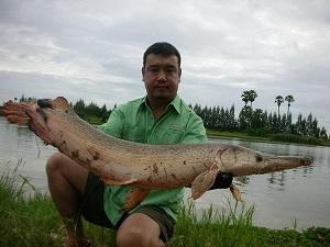 predator fishing at Lake Monsters Thailand