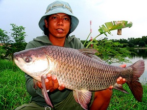 Rohu fishing Bung Buk Lake near Bangkok