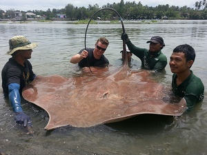 Stingray fishing Mae Klong