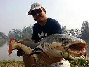 IT Lake Monsters lure fishing trip