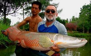 arapaima gigas cha am fishing park