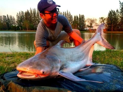IT Monster Predator fishing Thailand 2015