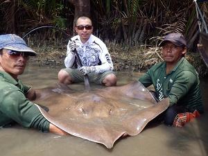 More Stingray fishing Maeklong River