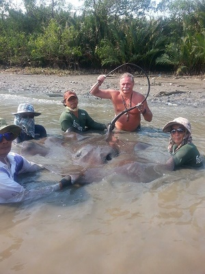 Stingray fishing Maeklong River 2015