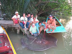 fishing bang pakong river