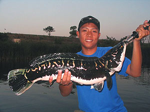 fishing world lake snakehead
