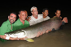 fishing arapaima gigas at IT Monster Lake