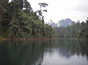Giant Snakehead fishing Mae Ngat Dam