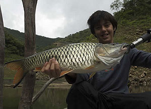 hampala barb fishing River Ping Chiang Mai Thailand