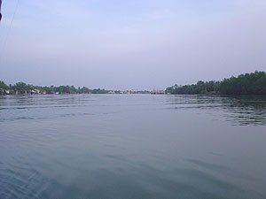 fishsiam maeklong river