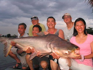 75kg Mekong Catfish caught fishing Bangkok