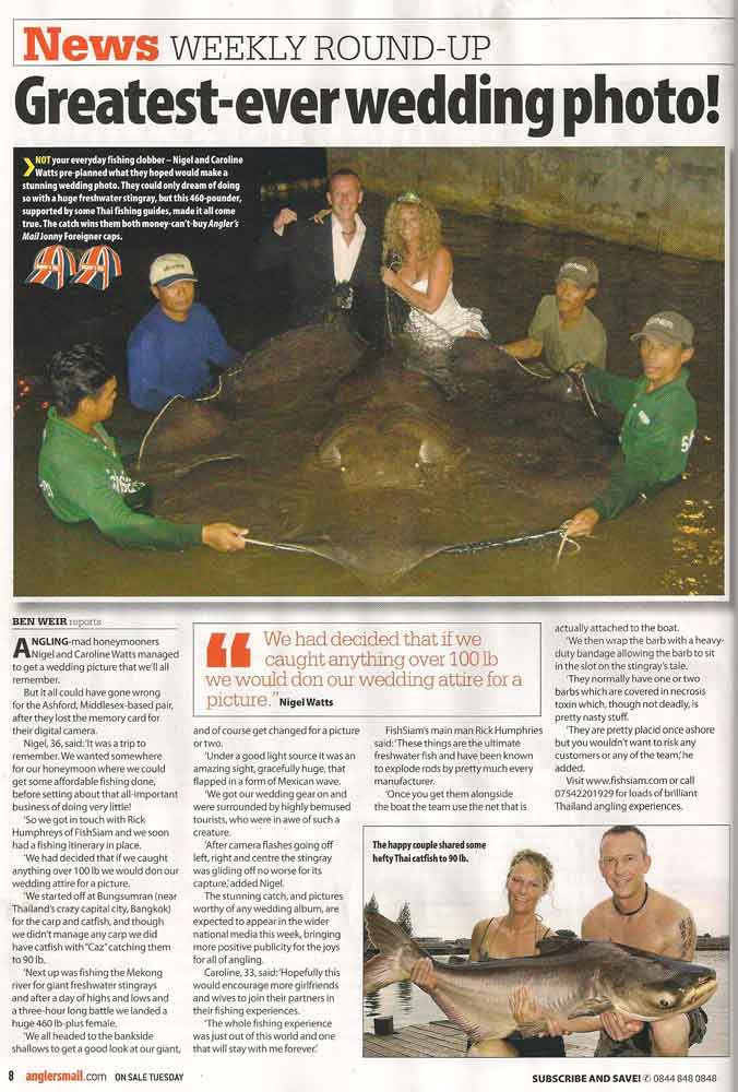 anglers mail honeymoon stingray
