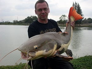 Arapaima Fishing in Ratchaburi Thailand