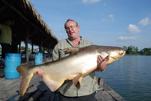 Big Pacu and Catfish fishing Bungsamran Thailand