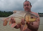 Carp fishing in Thailand Topcats