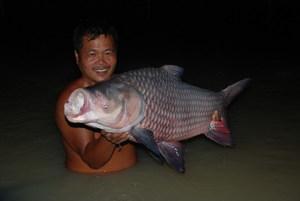 Fishing at Topcats Fishery Koh Samui Thailand