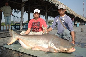 Fishing for Mekong Catfish Thailand