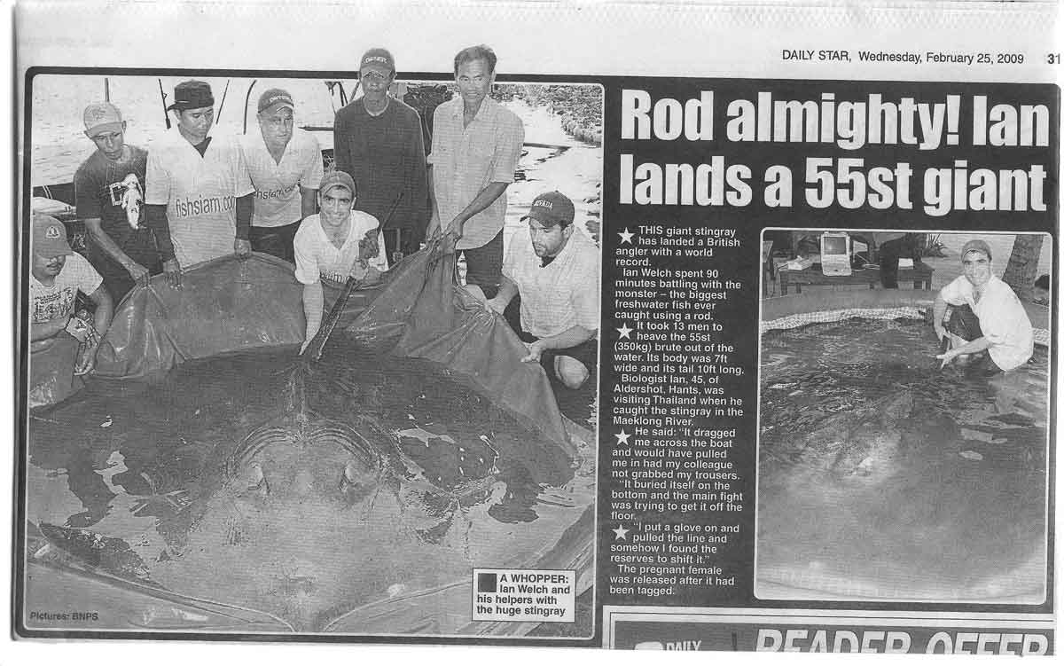 daily star world record stingray