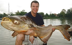 Mekong Catfish fishing Thailand