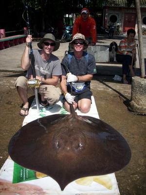 Monster Fishing Freshwater stingrays Thailand
