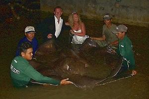 Monster Stingray fishing in Thailand