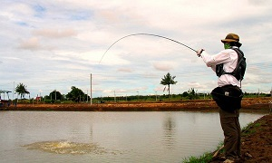 Thailand Fly Fishing Barramundi Bangkok